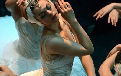 13 de novembre | Ballet de Moscou: El llac dels cignes